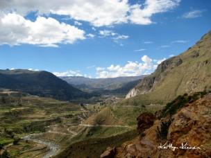 1-Peru (Arequipa) 207